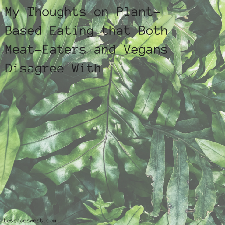 My Thoughts on Plant-Based Eating that Both Meat-Eaters and Vegans Don't Like (1).png